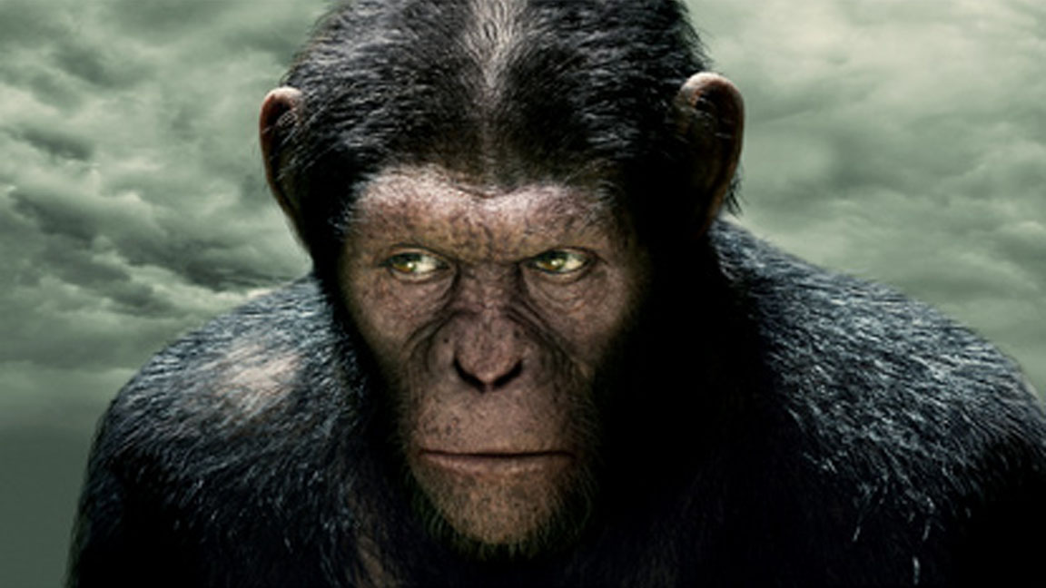 """Caesar"" from ""The Rise of the Planet of the Apes"" film."